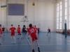 Чемпионат Донецкой области по волейболу