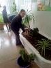 Вихованці шкільного клубу «Еколог» Бахмутського НВК №11 вирішили облаштувати на клумбі в холі навчального закладу міні-альпінарій «Скарби рідної Донеччини».