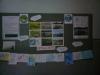 Заходи до Міжнародного дня водно-болотних угідь