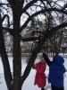Акція «Годівничка» в дошкільному закладі №24 «Сонечко»