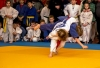 25 січня у СОК «Енергетик» у м. Миколаївці відбувся відкритий чемпіонат Донецької області з дзюдо серед юнаків та дівчат