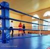 Бахмут гостинно прийняв обласні змагання з боксу