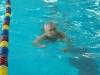 05.11.2015 в преддверии Дня инвалидов в плавательном бассейне «Дельфин» прошли соревнования по плаванью среди инвалидов,  в которых приняли участие 32 человека с различными  нозологиями: зрения, слуха и опорно-двигательного аппарата.